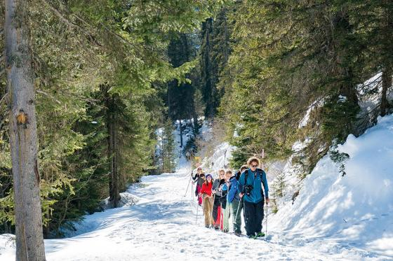 Schneeschuhtour - Jungfrau Region  [article_picture_small]