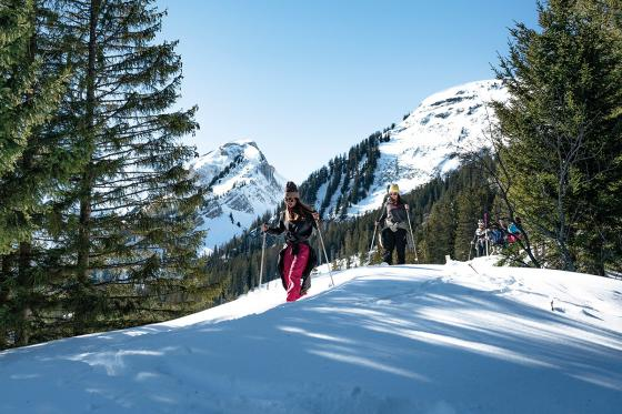 Schneeschuhtour - Jungfrau Region 2 [article_picture_small]