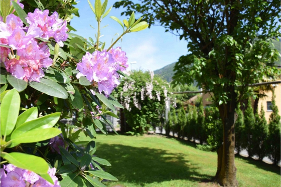 Familien-Weekend Tessin - 3* Villa Siesta Park Losone 8 [article_picture_small]