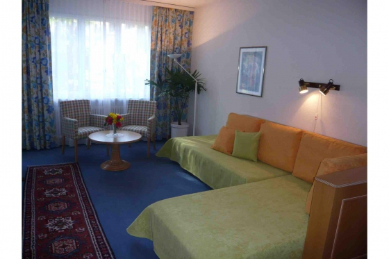 Familien-Weekend Tessin - 3* Villa Siesta Park Losone 10 [article_picture_small]