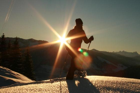 Abend- oder Vollmondschneeschuhtour - mit Fondueplausch und Bockerlabfahrt 1 Person 1 [article_picture_small]