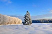 Kurzurlaub in Schaffhausen - Wanderparadies mit Rundsicht