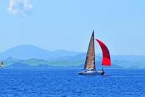 Segel Schnupperkurs - für Einsteiger