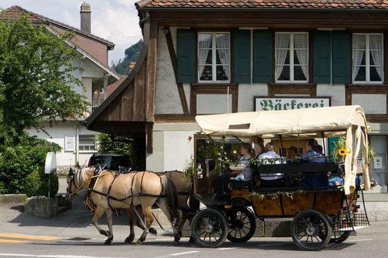 Planwagenfahrt - im Emmental für 7 Personen 3 [article_picture_small]