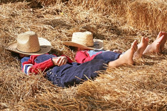 Schlafen im Stroh - Geschenk für Familien  [article_picture_small]