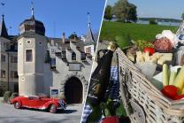 Picknickkorb für 2 - Romantik am Bodensee