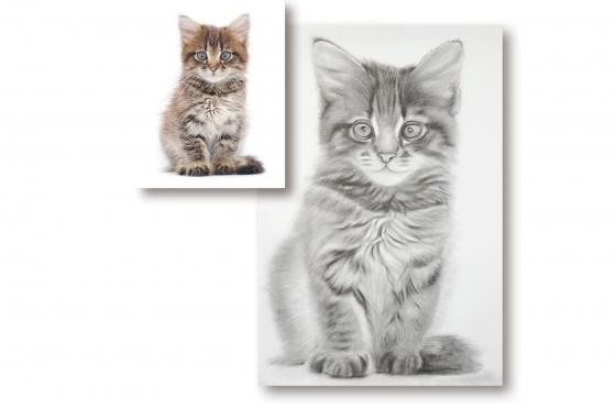 Original-Kunstbild - Kohlezeichnung nach Fotovorlage  1 [article_picture_small]