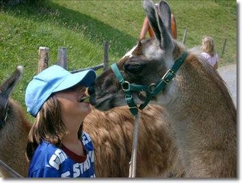 Trekking demi-journée - accompagné de lamas 1 [article_picture_small]