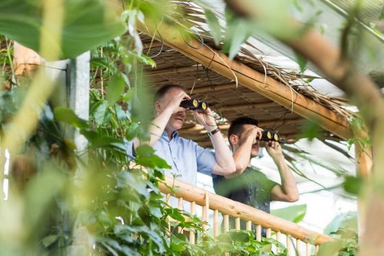 Tropenhaus Frutigen - Familieneintritt 6 [article_picture_small]