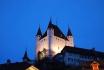 Schloss Besichtigung -mit Schifffahrt auf dem Thunersee 19