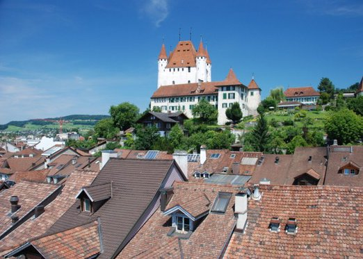 Schloss Besichtigung  - mit Schifffahrt auf dem Thunersee 2 [article_picture_small]