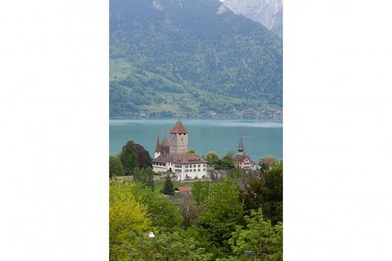Schloss Besichtigung  - mit Schifffahrt auf dem Thunersee 12 [article_picture_small]
