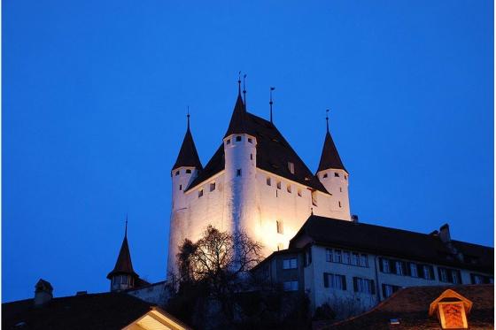 Schloss Besichtigung  - mit Schifffahrt auf dem Thunersee 18 [article_picture_small]