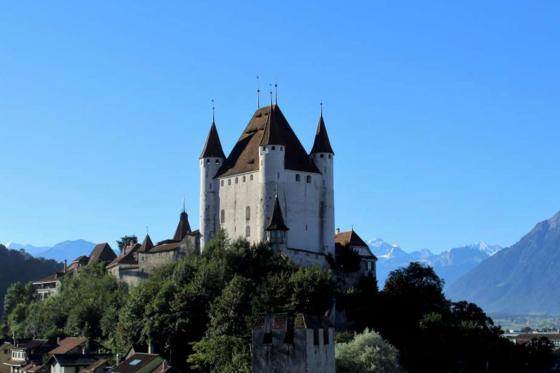 Schloss Besichtigung  - mit Schifffahrt auf dem Thunersee 22 [article_picture_small]