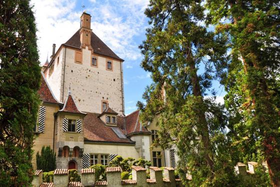 Schloss Besichtigung  - mit Schifffahrt auf dem Thunersee 23 [article_picture_small]