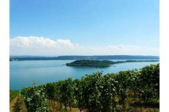 SAFARI im 3-Seen-Land - DEFENDER Tours bewegt die Menschen in die Natur! 3 [article_picture_small]