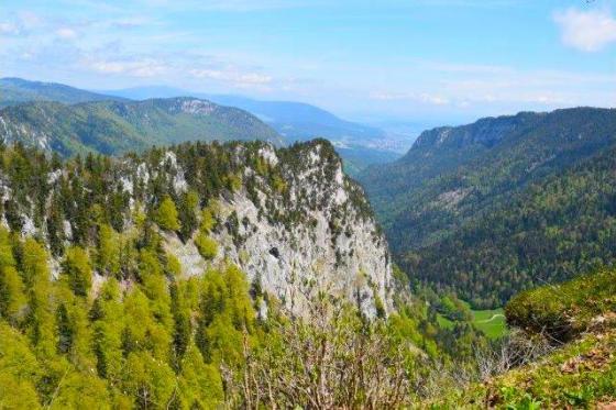 SAFARI im 3-Seen-Land - DEFENDER Tours bewegt die Menschen in die Natur! 4 [article_picture_small]