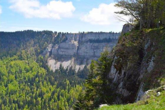 SAFARI im 3-Seen-Land - DEFENDER Tours bewegt die Menschen in die Natur! 5 [article_picture_small]
