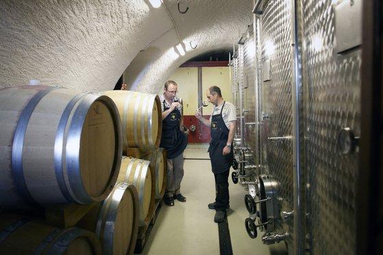 Besuch im Weingut  - mit Wein Degustation 2 [article_picture_small]
