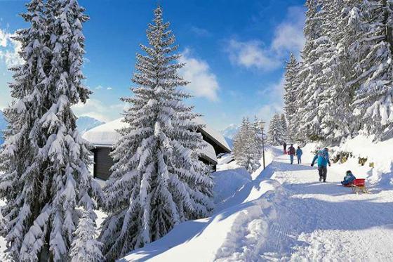Schneeschuh-Spass & Welless - 1 Woche für 2 Personen 5 [article_picture_small]