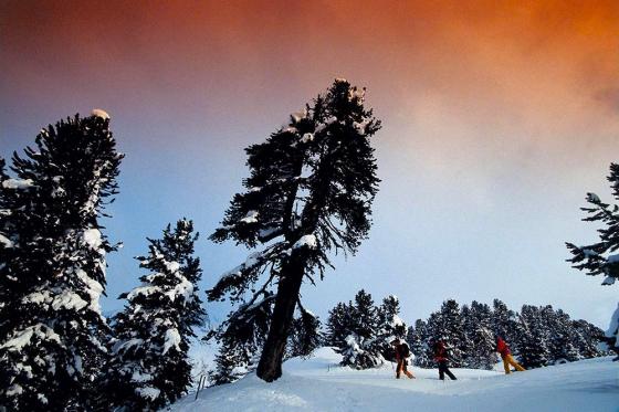 Schneeschuh-Spass & Welless - 1 Woche für 2 Personen 6 [article_picture_small]