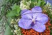 Atelier floral-Au rythme des saisons 1