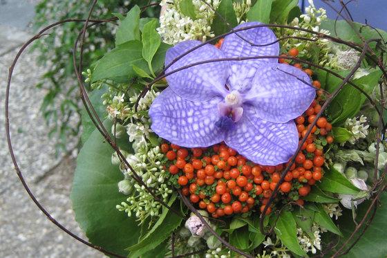 Atelier floral - Au rythme des saisons  [article_picture_small]
