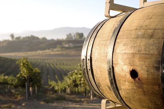 Wein selber machen - Assemblage Gutschein 1 [article_picture_small]