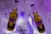 Iglu Übernachtung für 4-inkl. Fondue, Schneeschuhwanderung & Aperitif 18