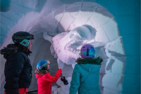 Iglu Übernachtung für 4 - inkl. Fondue, Schneeschuhwanderung & Aperitif 5 [article_picture_small]