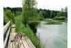Husky Tagestrekking-im Zürcher Weinland 11