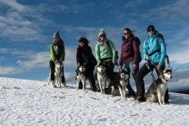Journée de trekking avec huskys - Dans le Weinland zurichois