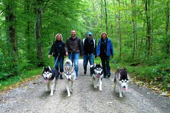 Husky Tagestrekking - im Zürcher Weinland 1 [article_picture_small]