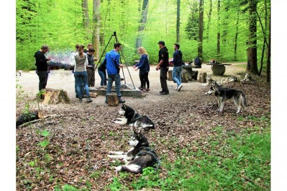 Husky Tagestrekking - im Zürcher Weinland 9 [article_picture_small]