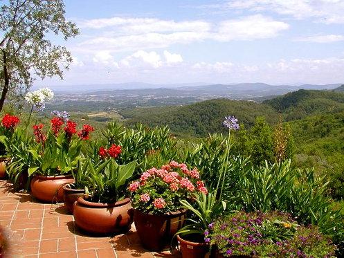 Traumhafte Ferien in der Toskana - Appartment für 7 Nächte inkl. Pool und Weindegustation 5 [article_picture_small]