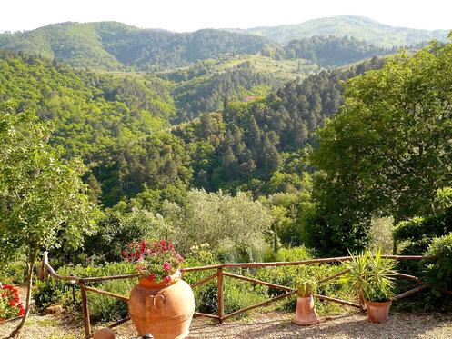 Traumhafte Ferien in der Toskana - Appartment für 7 Nächte inkl. Pool und Weindegustation 19 [article_picture_small]