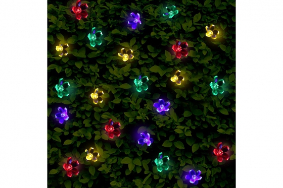 Chaîne de lumières LED - Set de 50 fleurs, solaire 2