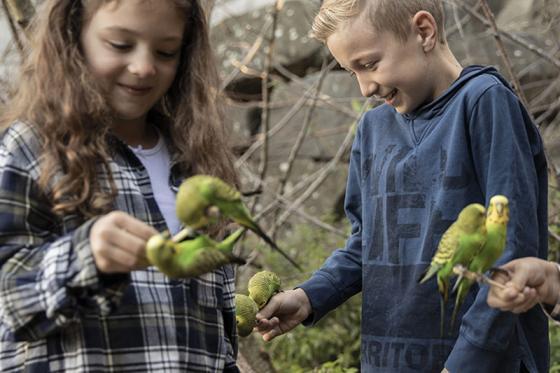 Zoo Familieneintritt - für 2 Erwachsene und 2 Kinder 5 [article_picture_small]