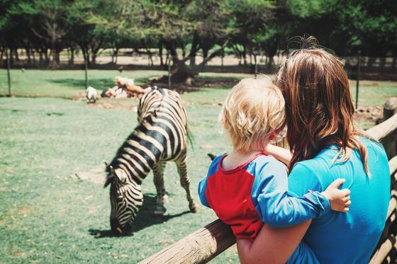 Sonntagsbrunch im Zoo - Brunch Erlebnis für 2 Personen 1 [article_picture_small]