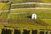 Dégustation de vin pour deux-Cave Ardevaz (VS) avec apéritif & bouteille offerte 2