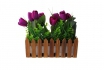 Blumenkiste - 30x10x12 cm (LxBxH)  [article_picture_small]