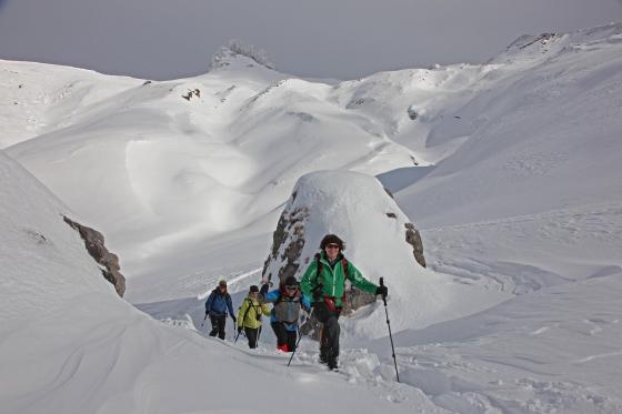 Schneeschuhwanderung - mit Raclette Plausch 1 [article_picture_small]