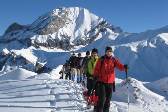 Schneeschuhwanderung - mit Raclette Plausch 3 [article_picture_small]