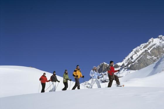 Schneeschuhtour Einsteiger - Winter Erlebnis in Adelboden 1 [article_picture_small]