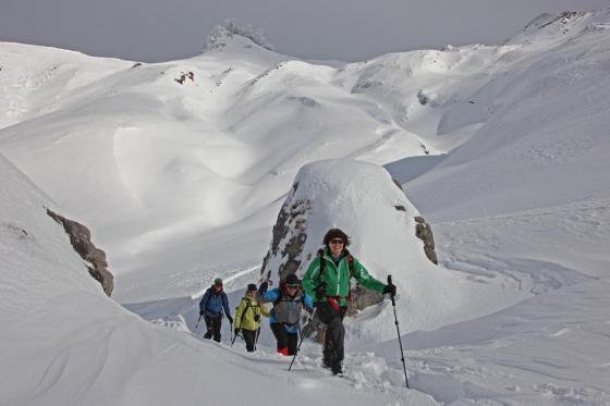 Schneeschuhtour Einsteiger - Winter Erlebnis in Adelboden 2 [article_picture_small]
