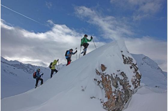Schneeschuhtour Einsteiger - Winter Erlebnis in Adelboden 3 [article_picture_small]