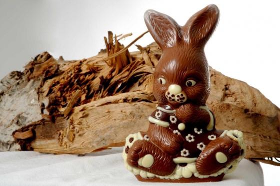 Schokoladen Seminar - Süsser Traum für 6 Personen 3 [article_picture_small]