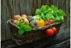 Ernährungsberatung-gesund & vital durchs Leben 4