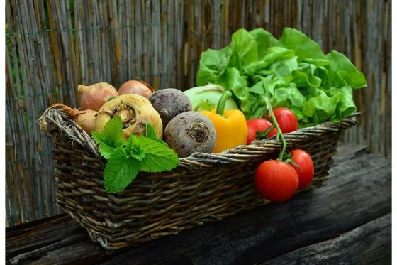 Ernährungsberatung - gesund & vital durchs Leben 3 [article_picture_small]