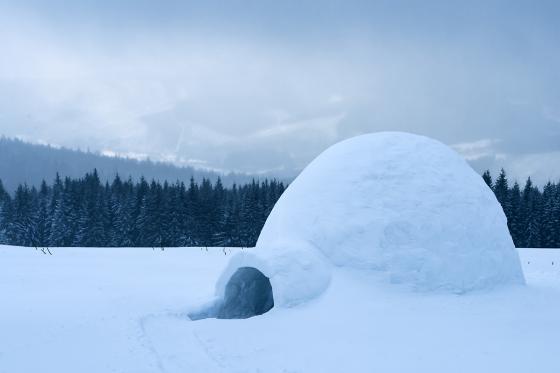 Iglu Übernachtung - im selbst gebauten Iglu inkl. Schneeschuhtour  [article_picture_small]